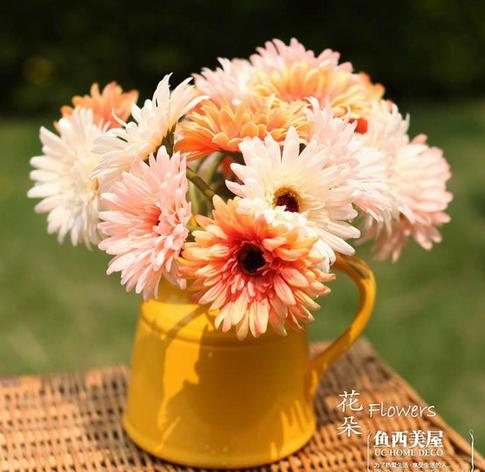 【父亲节】父亲节送什么花好 送爸爸的花代表什么含义