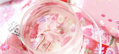 送给4月过生日的她一朵最美的樱花吧 樱花生日礼物